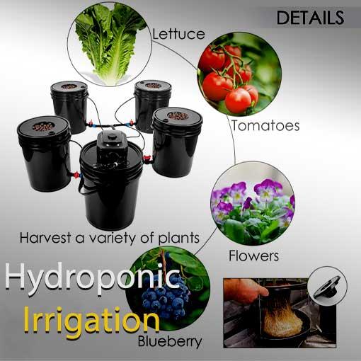 سیستم های هیدروپونیک و آبیاری